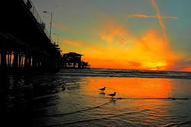 sunsetrug